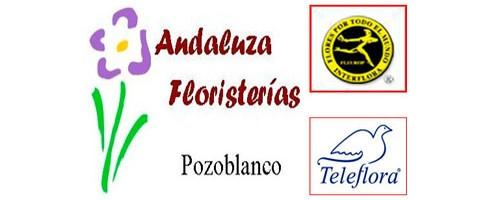 andaluzafloristeriasD9C3A6FE-F1D5-A462-0018-AFBFEE19FC54.jpg