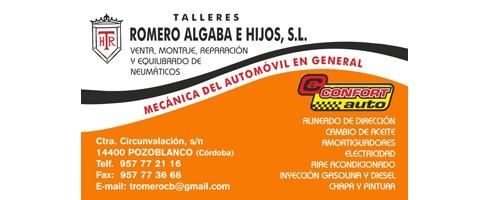 talleres-romero-algaba-e-hijos-slBFF82E8E-3C70-10BB-3E55-B5F071783FE9.jpg